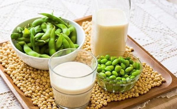 sữa mầm đậu nành có tốt không, uống bột mầm đậu nành đúng cách, mầm đậu nành nguyên xơ có tốt không, uống mầm đậu nành vào lúc nào, sữa mầm đậu nành có tác dụng gì, sữa mầm đậu nành tươi, làm sữa mầm đậu nành, uống sữa mầm đậu nành có tốt không, uống sữa mầm đậu nành có tác dụng gì, cách làm sữa mầm đậu nành tươi, giá sữa mầm đậu nành