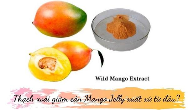 thạch xoài giảm cân mango jelly có tốt không, thạch xoài giảm cân hàn quốc, thạch xoài giảm cân mango jelly, wild mango jelly, mango jelly giảm cân, thạch xoài giảm cân hàn quốc có tốt không, giảm cân mango jelly, thạch xoài hàn quốc, thạch giảm cân mango jelly, thach xoai giam can, mango jelly giam can han quoc, giảm cân thạch xoài, review thạch xoài giảm cân mango jelly, jelly mango giảm cân hàn quốc, thạch xoài giảm cân hàn quốc review, thạch xoài wild mango jelly, thạch xoài giảm cân wild mango jelly, thạch xoài giảm cân hàn quốc webtretho, thạch xoài giảm cân hàn quốc giá bao nhiêu, thạch xoài giảm cân có hiệu quả không, giảm cân mango jelly có tốt không, thạch xoài mango jelly, thạch xoài giảm cân mango jelly hàn quốc, review thạch xoài giảm cân, giá thạch xoài giảm cân hàn quốc, thach xoai giam can han quoc, thạch xoài giảm cân giá bao nhiêu, giảm cân jelly mango, frombio wild mango jelly review, wild mango jelly diet review, thạch giảm cân vap tok tok jelly, thạch xoài giảm cân có tốt không, thạch xoài giảm cân hàn quốc webtretho, thạch giảm cân hàn quốc, thạch xoài giảm cân hàn quốc có tốt không, , ,